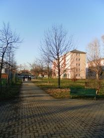 le case di proprietà comunale