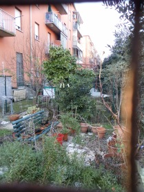 un cortile privato